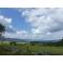 """Séjour """"Les Vosges, grandeur nature !"""" 2018"""