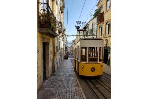 """Camp """"Un peu de toi pour Lisbonne"""""""